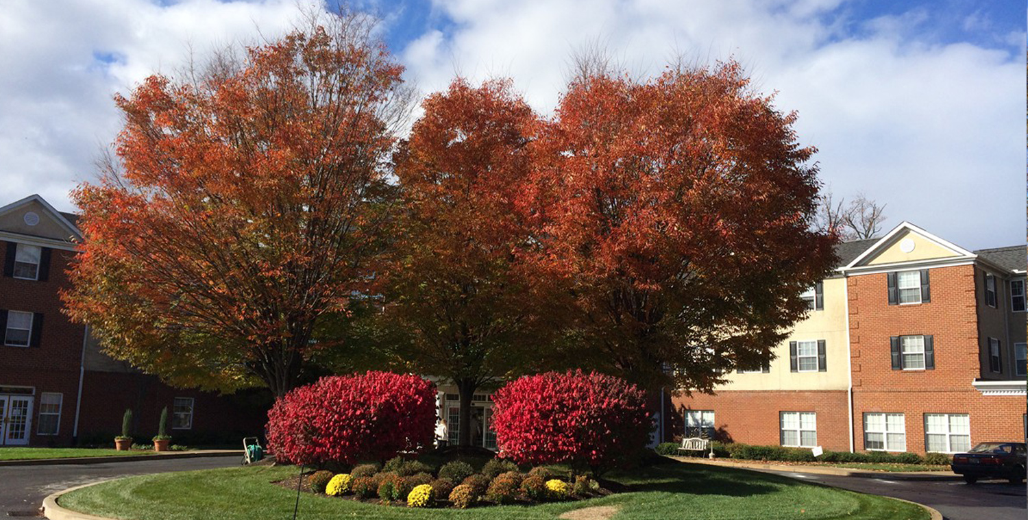 Landscape Grounds Management in DE, PA, and MD